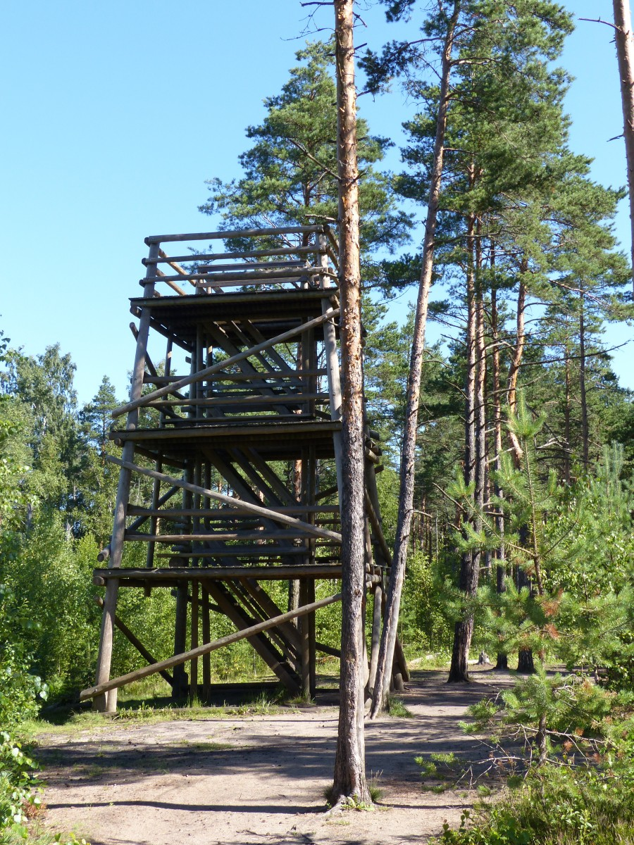 Lookout tower in the bog